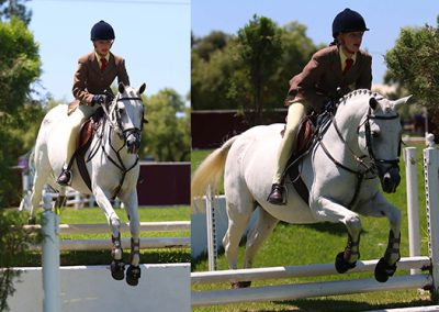 pony-for-sale-waterside-lady-franchesca_2